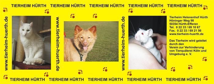 DA_TierheimHuerth