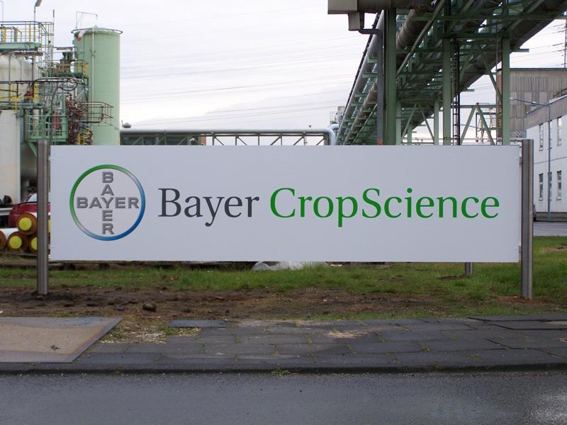 SCH_Bayer2
